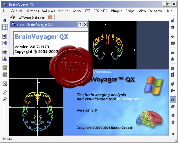 Brain Innovation BrainVoyager QX v2.0.7
